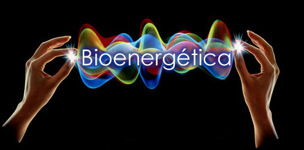 Bioenergetica 2015